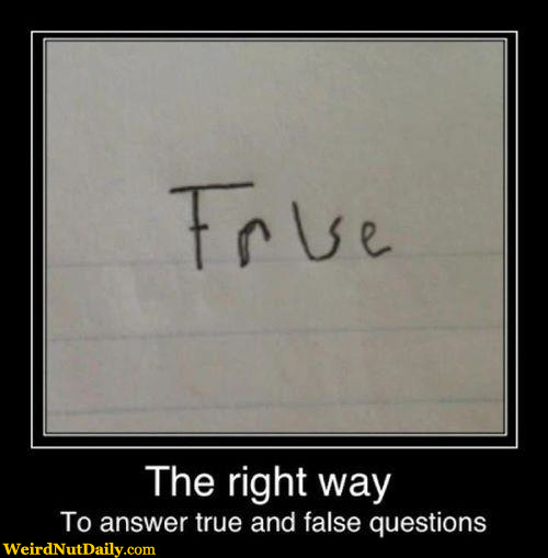 funny pictures weirdnutdaily   how to answer true or