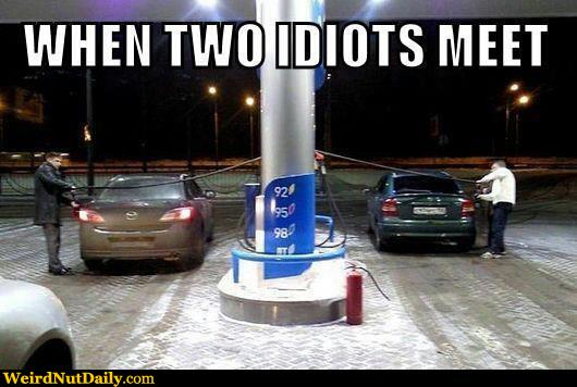 Funny Pictures @ WeirdNutDaily - When Idiots Meet