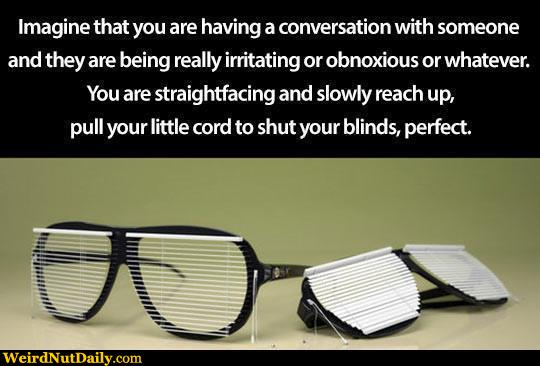 Funny Pictures Weirdnutdaily Sunglass Blinds