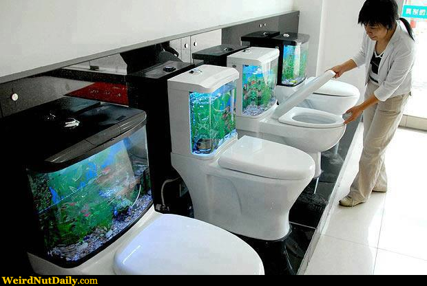 Funny Pictures @ WeirdNutDaily - Fish Bowl Toilets
