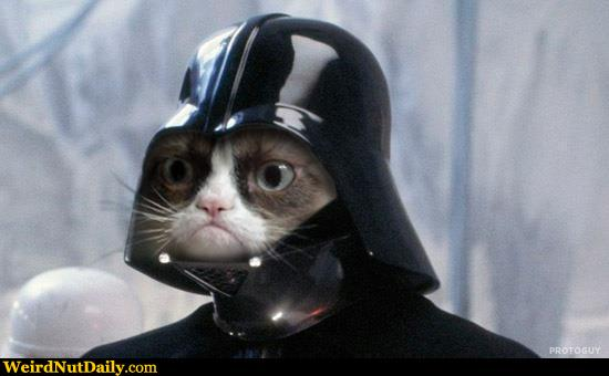 funny pictures weirdnutdaily grumpy darth vader. Black Bedroom Furniture Sets. Home Design Ideas