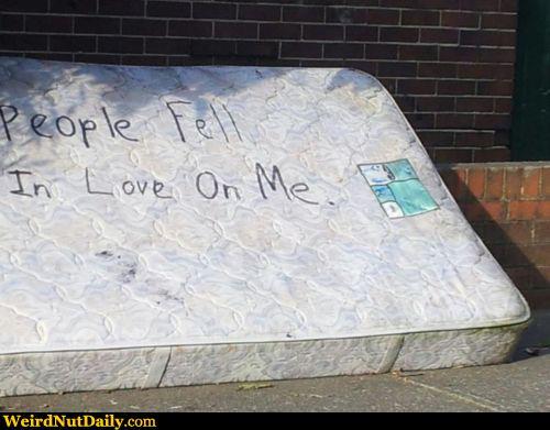 Funny Pictures Weirdnutdaily Mr Loooove Mattress