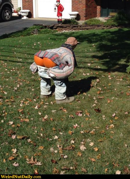 Funny Pictures Weirdnutdaily It S The Great Pumpkin Moon